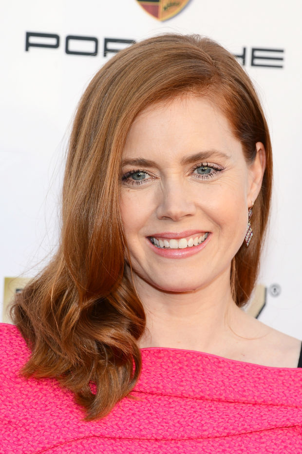 Amy Adams at the 2014 Critics' Choice Awards.