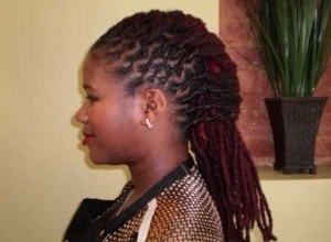 3067d  Hairstyles For Sisterlocks 300x225.jpg