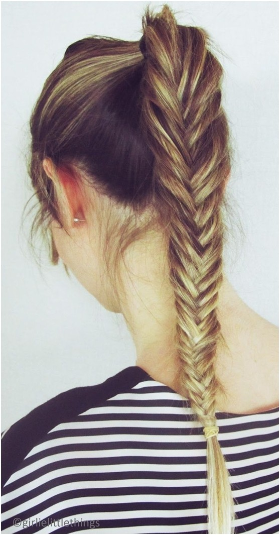 Fishtail Braid Ponytail for Summer Hairstyles