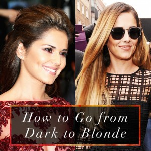 2c58b  How to Go from Dark to Blonde.jpg
