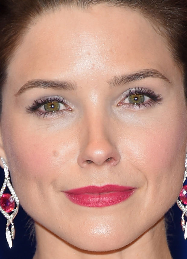 Close-up of Sophia Bush at the 2015 White House Correspondents' Dinner.