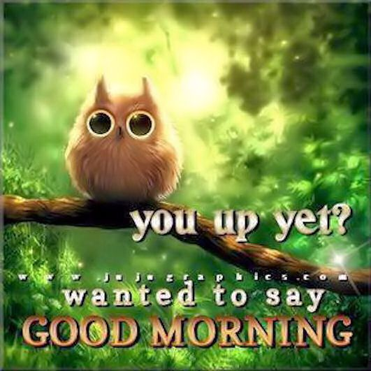 Good Morning Quotes 12