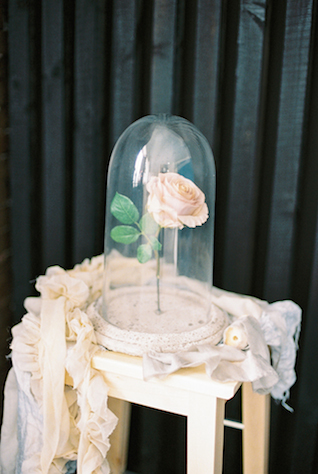 Rose under bell jar | Maria Levitska | see more on: http://burnettsboards.com/2015/05/cold-sea-shore-stormy-wedding-editorial/