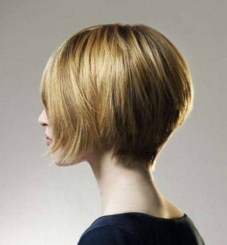 hairstyles For Short, Straight Hair5