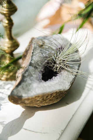 air plant and geode | John Bello | see more on: http://burnettsboards.com/2015/07/disneys-mermaid-wedding/