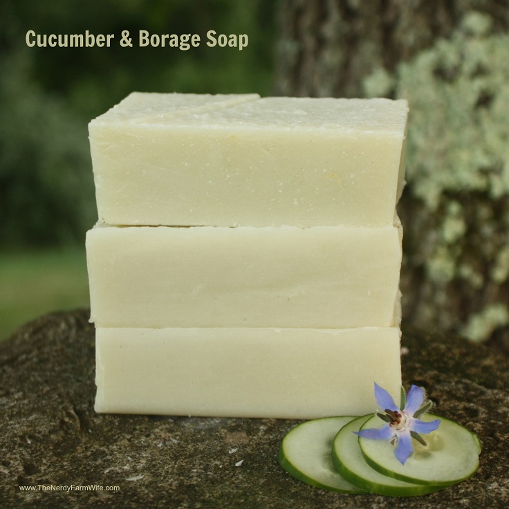 Cucumber Borage Soap