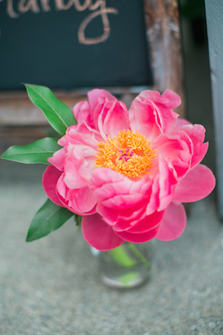 Pink peony | Sweetness and Light Photography | see more on: http://burnettsboards.com/2015/09/host-networking-party/