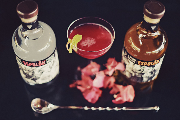 wedding drinks - photo by Tamiz Photography http://ruffledblog.com/inspired-by-color-wedding-ideas