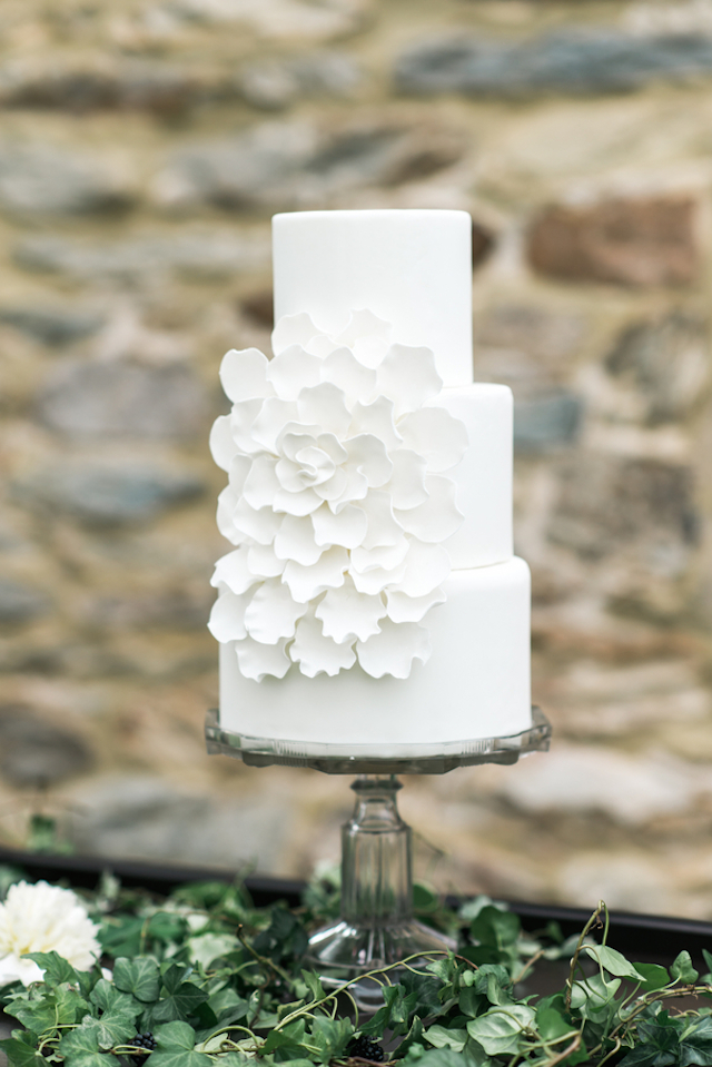 White wedding cake | Joy Michelle Photography | see more on: http://burnettsboards.com/2015/10/windswept-wedding-inspiration/