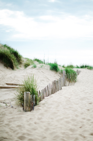 British beach bridals | Catherine Noble Photography | see more on: http://burnettsboards.com/2015/11/bridals-british-beach/