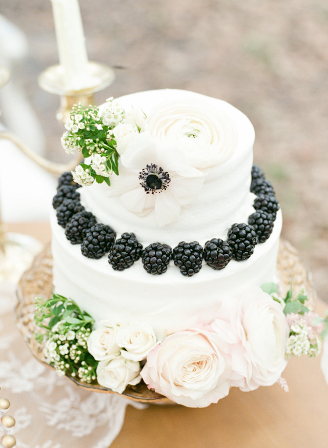 Cake with blackberries | Stephanie Rawcliffe Photography | see more on: http://burnettsboards.com/2015/11/blush-green-outdoor-bridal-session/