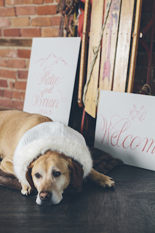 Winter wedding signage | Lauryn Ann Photography | see more on: http://burnettsboards.com/2015/12/ski-themed-winter-wedding/