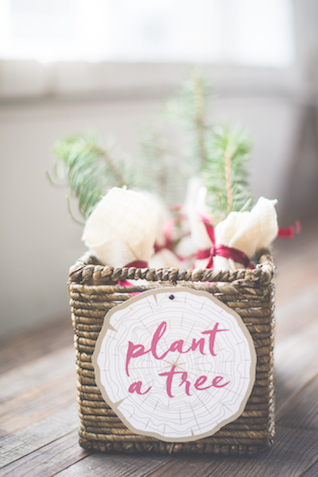 Tree wedding favors | Stephanie Ramsey and Melissa Malouf | see more on: http://burnettsboards.com/2015/12/christmas-wedding-ideas/