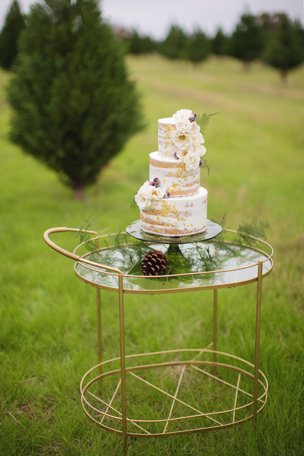 cake table - photo by Janeane Marie Photography http://ruffledblog.com/christmas-tree-farm-inspiration-shoot