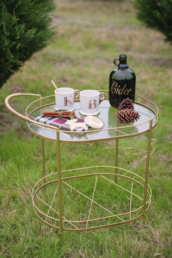 drink cart - photo by Janeane Marie Photography http://ruffledblog.com/christmas-tree-farm-inspiration-shoot
