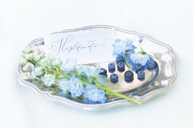 Calligraphy | Stasya Dementyeva Photography | see more on: http://burnettsboards.com/2015/12/sky-inspired-engagement/