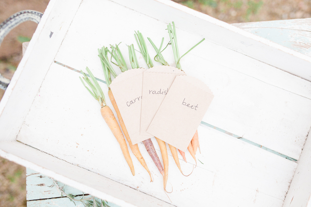 Organic farm wedding | Chris Loring Photography | see more on: http://burnettsboards.com/2015/12/roots-shoot-an-elegant-organic-farm-wedding/
