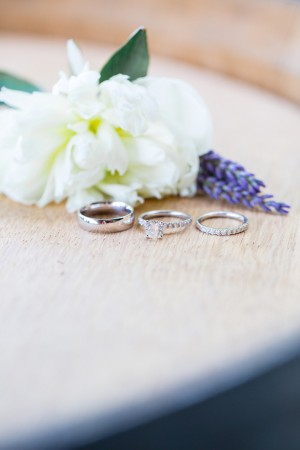 Wedding Rings - Captured by Solie Designs