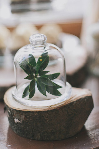 Botanical wedding Photographer Elina Sazonova