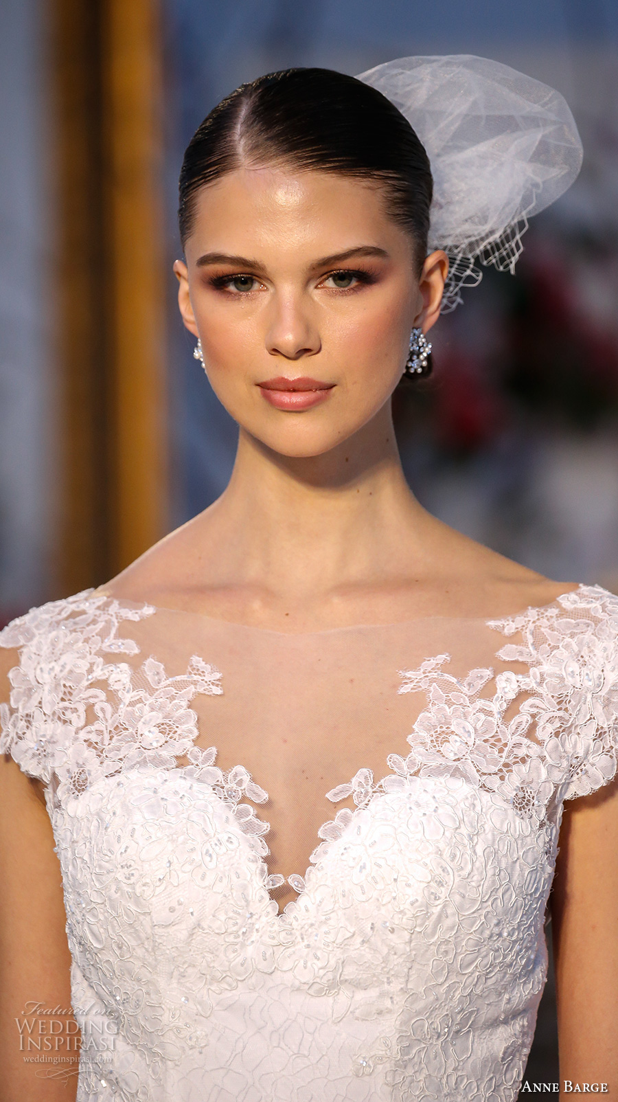 anne barge spring 2017 bridal embroidered lace cap sleeves illusion boat sweetheart neckline embellished bodice elegant a line tulle overskirt sheer back sweep train (006) zv