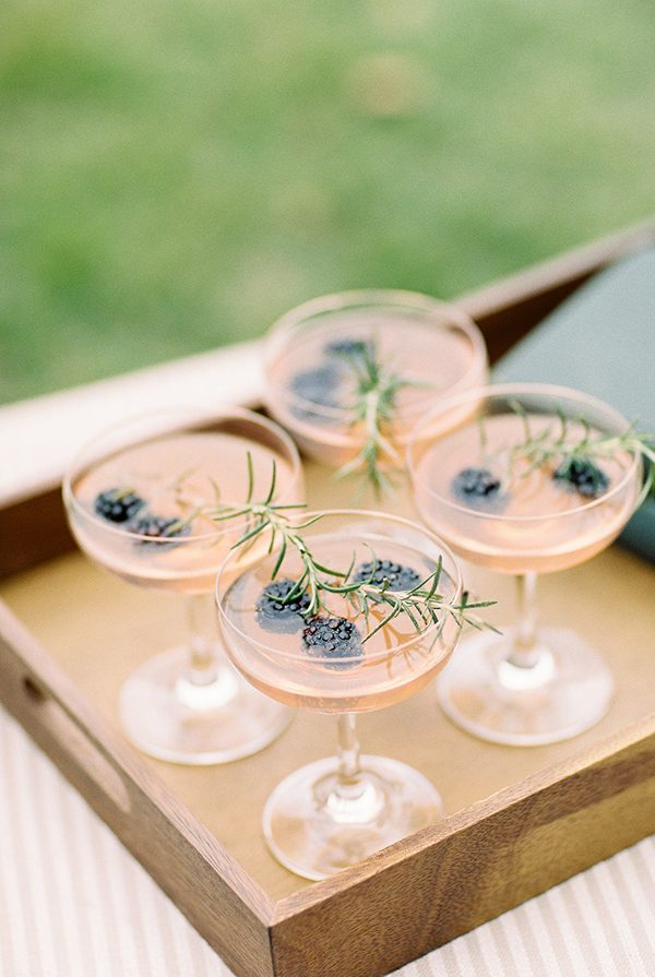 wedding drinks - photo by Erin Wilson Photography and Angela Sostarich Photography http://ruffledblog.com/southern-oak-tree-wedding-inspiration
