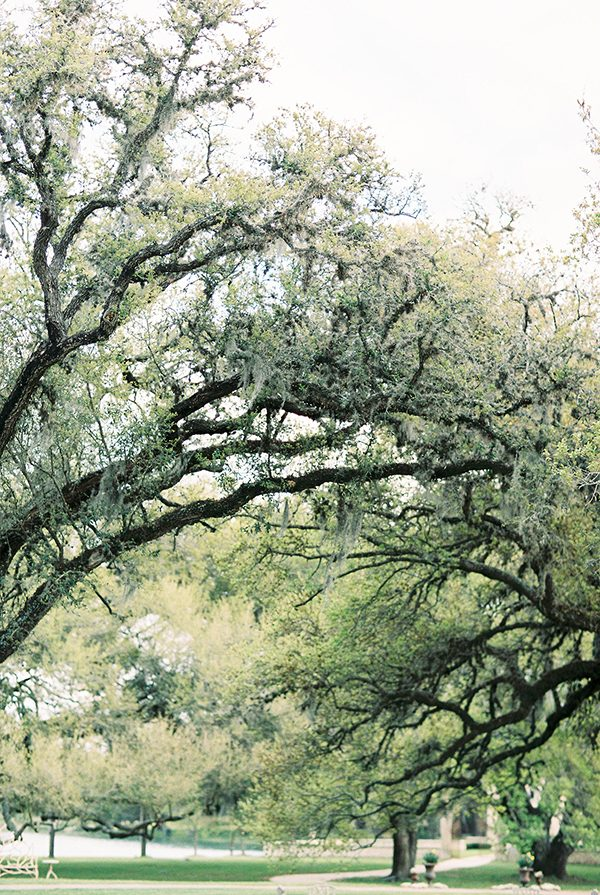 southern oak trees - photo by Erin Wilson Photography and Angela Sostarich Photography http://ruffledblog.com/southern-oak-tree-wedding-inspiration