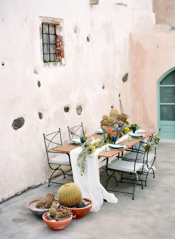 cacti and succulents were used for table decor