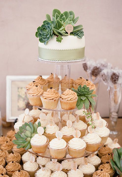cupcake stand decorated with succulents