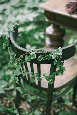 Ivy on chair | Alena Plaks