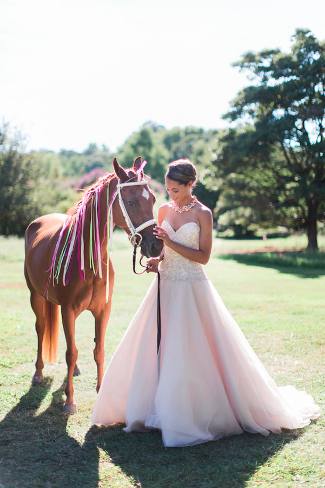 Horse with ribbons in mane | Grant & Deb Photographers
