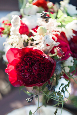 Red peony | Molly Lichten Photography