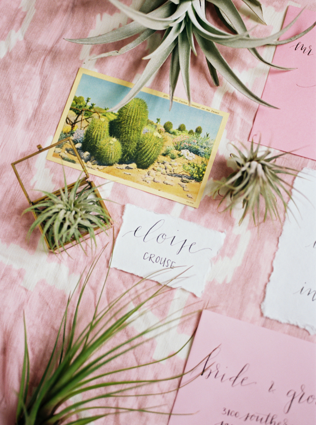 Cactus and air plant wedding invitations | Abigail Malone