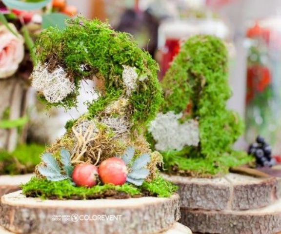 moss centerpieces with fruit