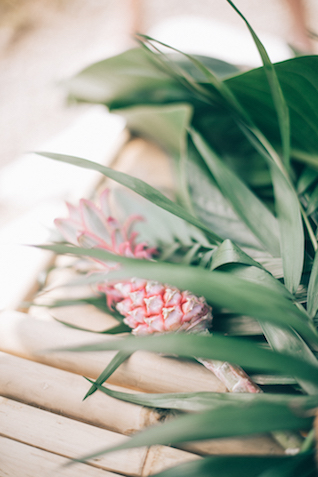 Mini pineapple | Paulina Weddings Photography
