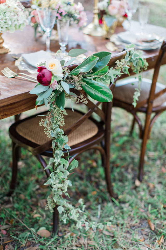 Chair vine | Flora + Fauna Photography