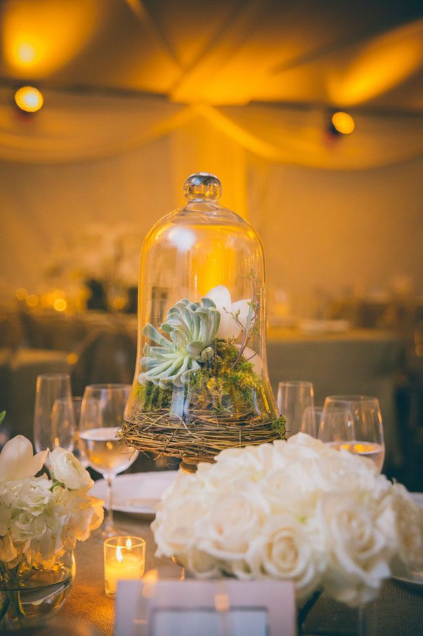 Tall wedding centerpieces - Kane and Social