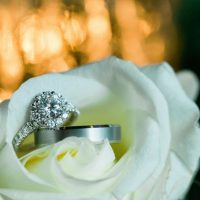 Wedding rings - Shandi Wallace Photography