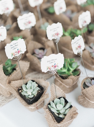 Potted succulent place cards | Love in Photographs