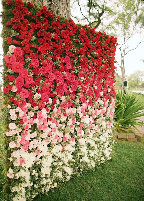 stunning ombre from red to white floral wall
