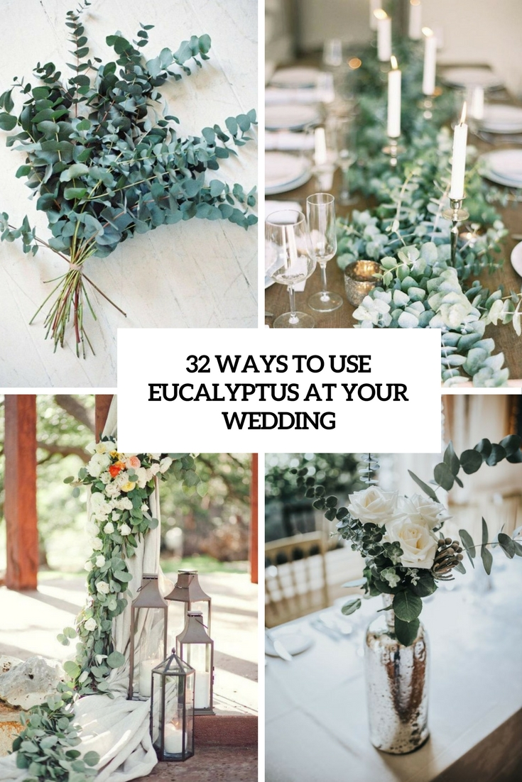 ways to use eucalyptus at your wedding cover