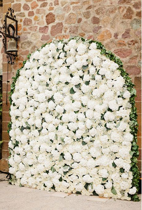 arched flower wall for the ceremony filled with fluffy white hydrangeas