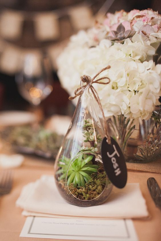 mini-terrariums with succulents as place cards and favors