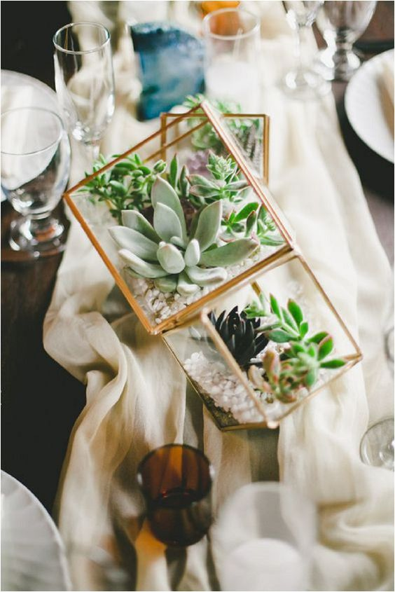 a combo of several terrariums for table decor