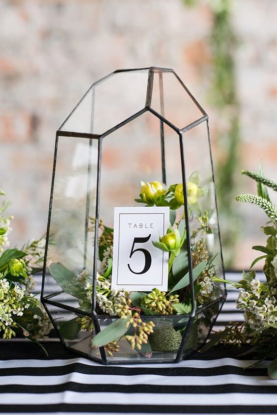 black frame terrarium with greenery inside and a table number