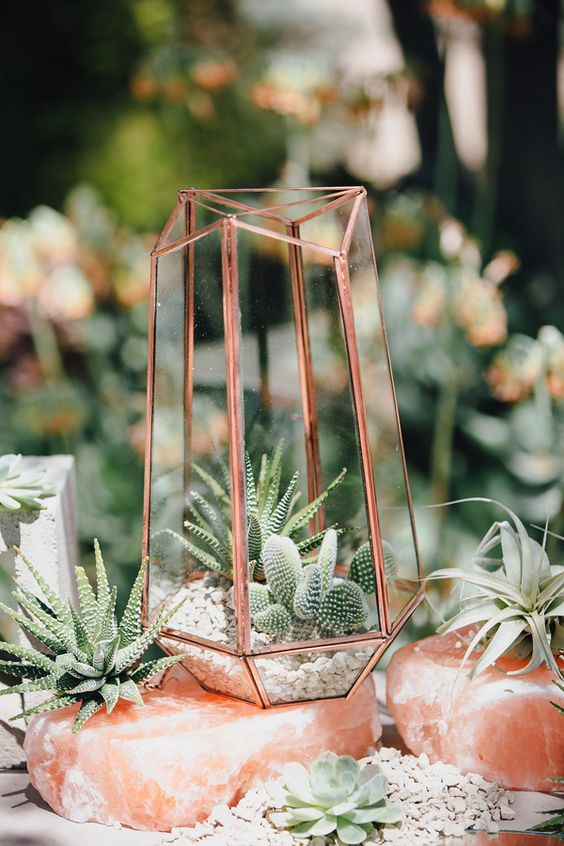 copper geometric terrarium with suculents and cacti inside