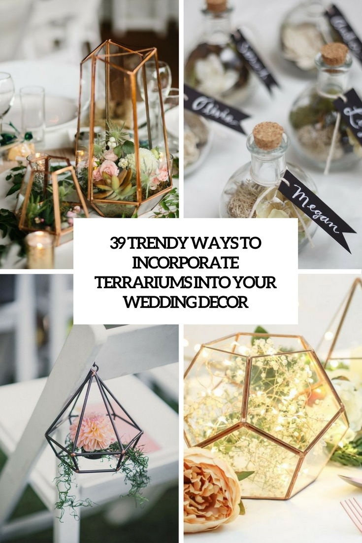 trendy ways to incorporate terrariums into your wedding decor cover