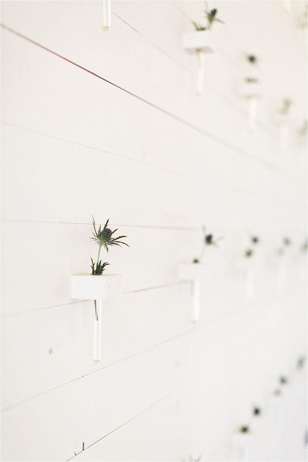 floral wall backdrops - photo by Flora and Fauna http://ruffledblog.com/modern-bohemian-wedding-with-an-air-plant-bouquet