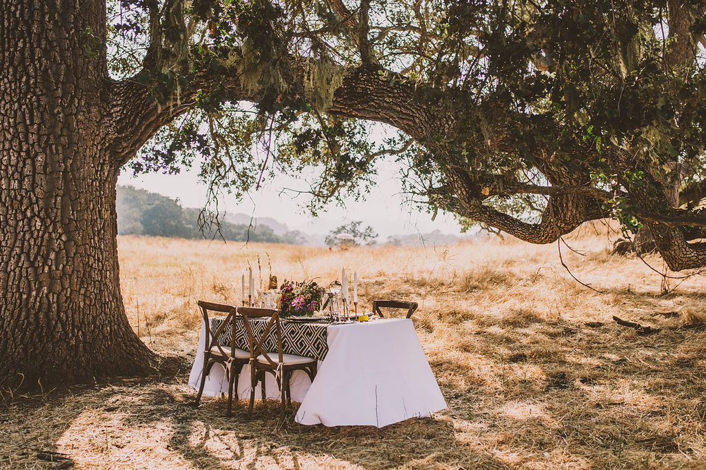 safari wedding receptions - photo by Michelle Roller http://ruffledblog.com/wild-safari-inspiration-shoot-with-a-jeep