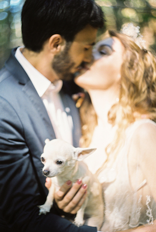 Wedding with Chihuahua | Svetlana Cozlitina Photography