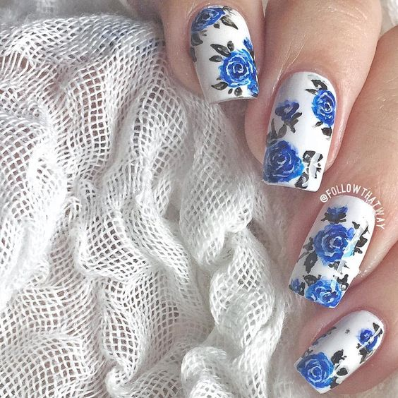 blue roses in the white background